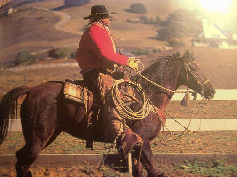 http://file1.npage.de/006930/03/bilder/cowboy.jpg