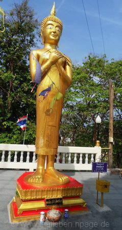 Bild Buddha Freitag