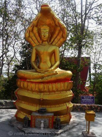 Bild Buddha Samstag