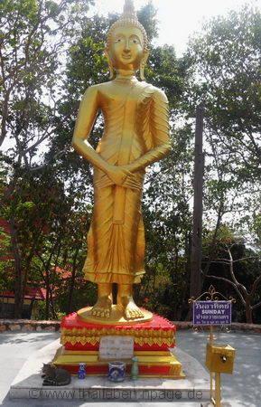Bild Buddha Sonntag