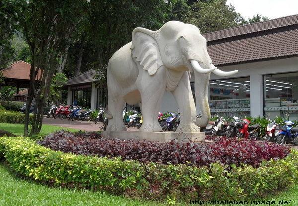Koh-Chang Elefant mit seinem Mahut führer