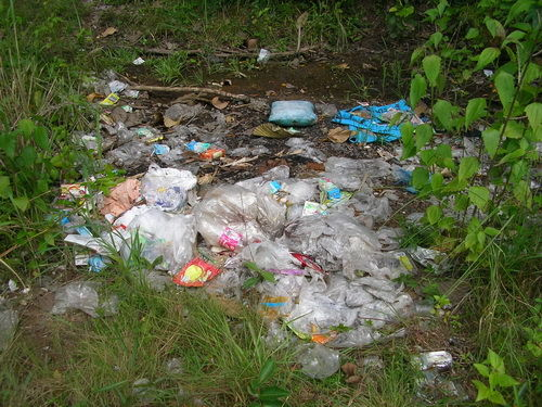 Müll am Strassenrand