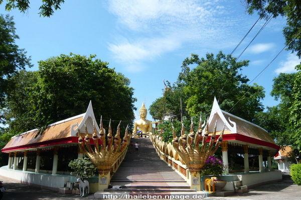 Buddhahill treppe