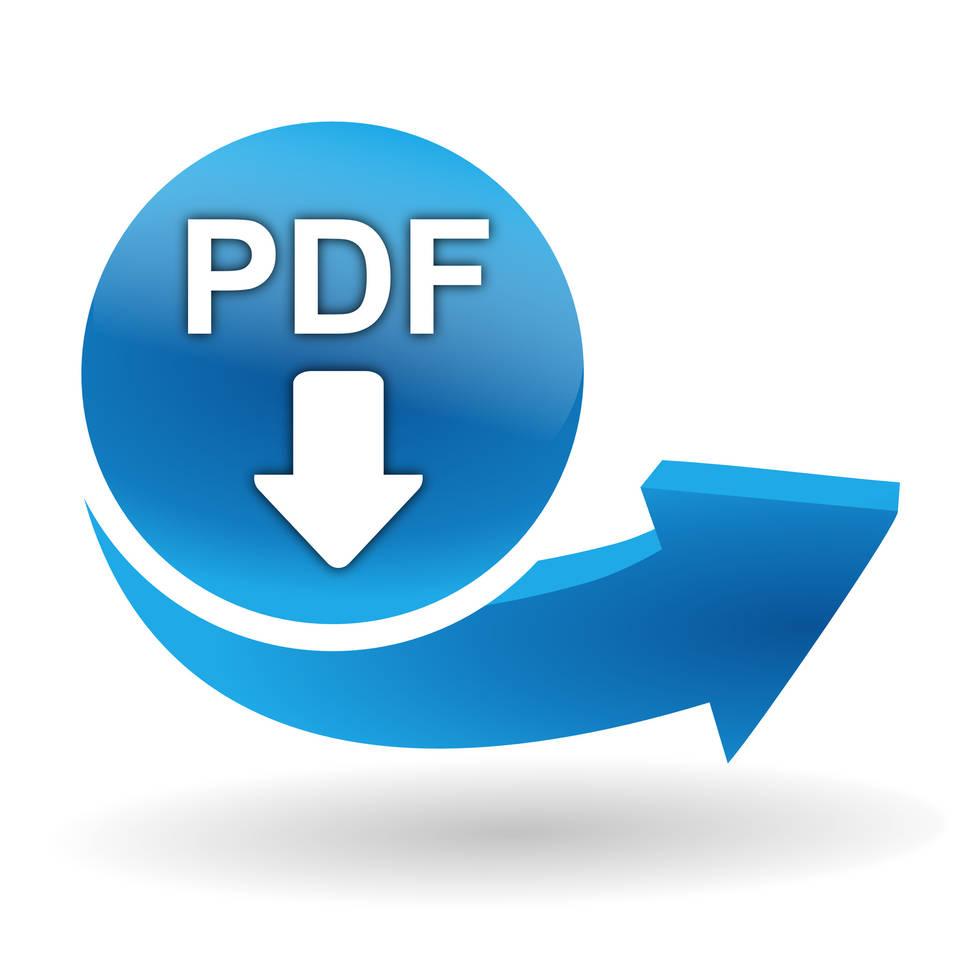Button für PDF Download Flyer