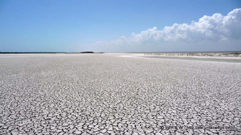 Foto vom Naturreservat bei Rio Lagartos