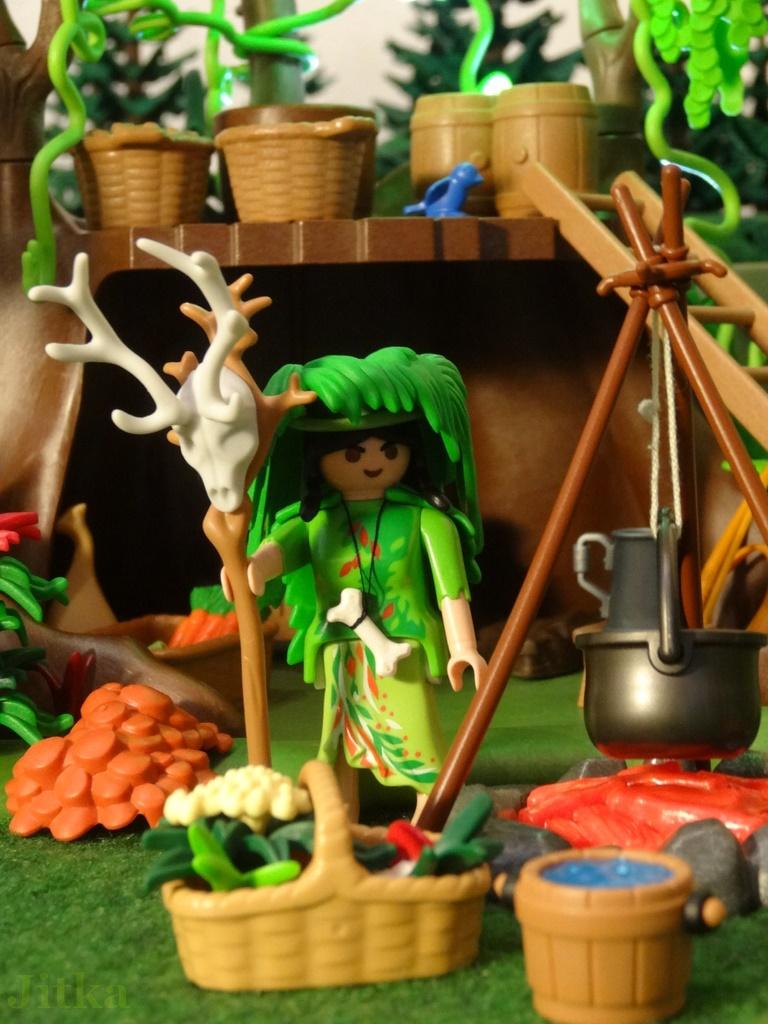 foto Grüne Hexe auf einer Waldlichtung vor ihrem Baumhaus