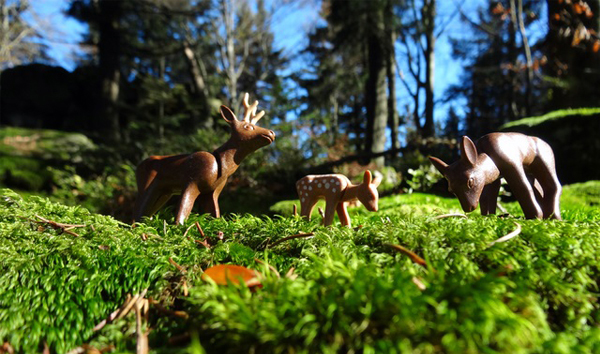 Foto Playmobil(R) Rehe im echten Wald