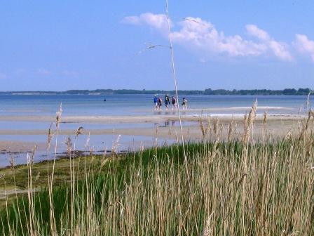 Strandlandschaft an der Ostseeküste
