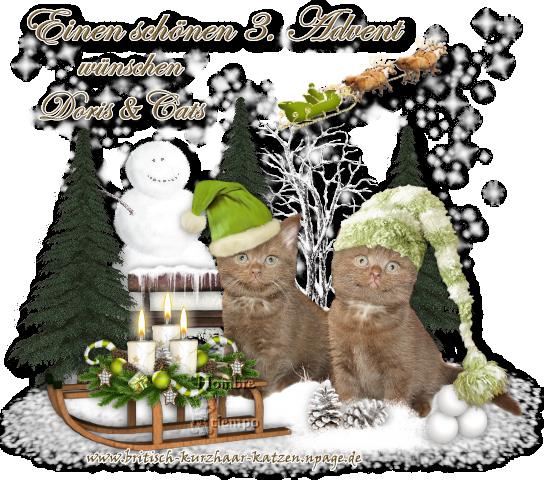 An den Beitrag angehängtes Bild: http://file1.npage.de/008305/23/bilder/we-3-advent-2011-2.png