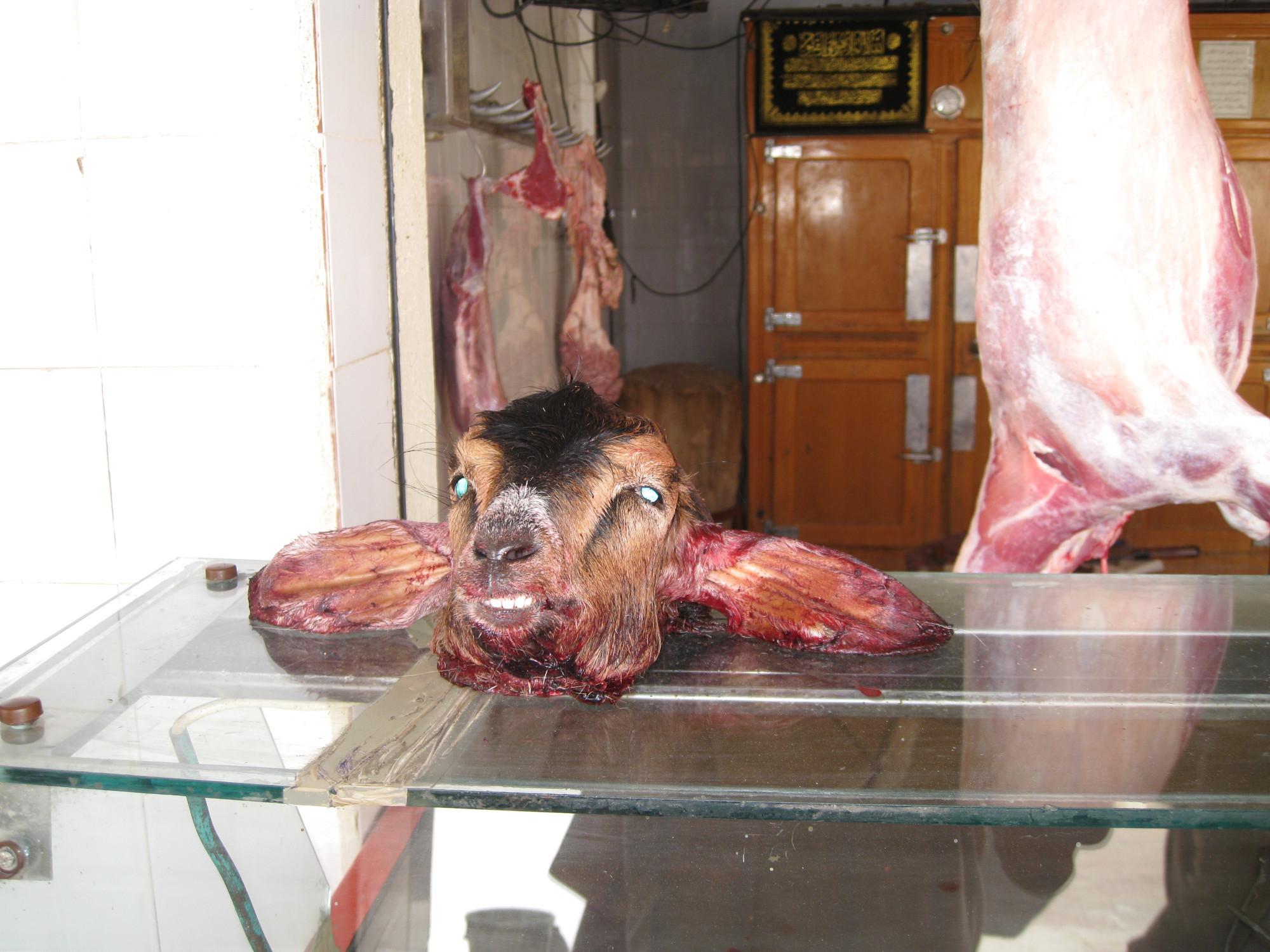 Abgehackter Ziegenkopf auf der Ladentheke