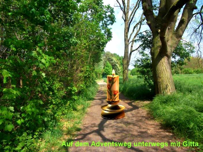Adventsweg durch die Natur
