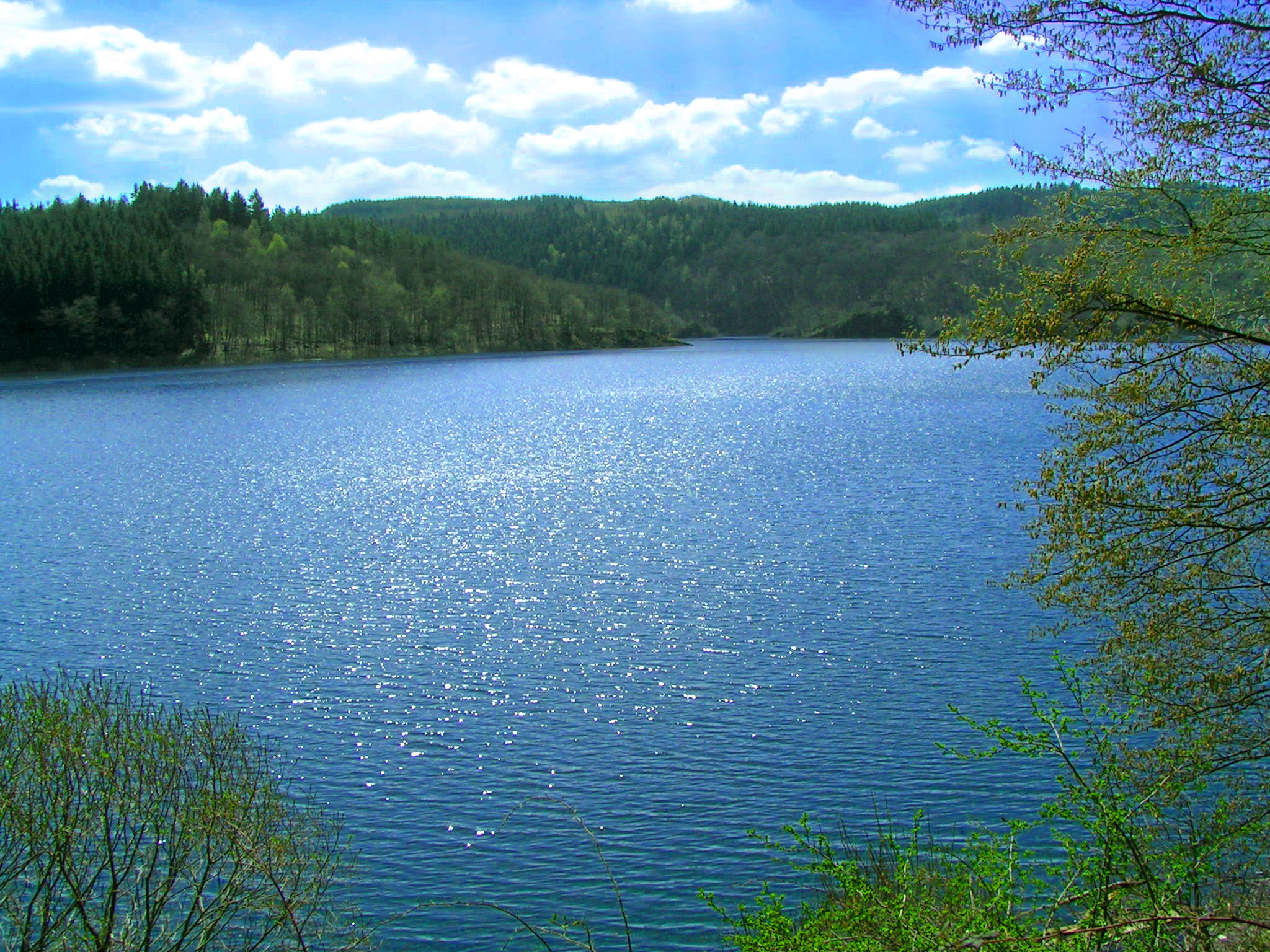 Ausblick auf Eifel See