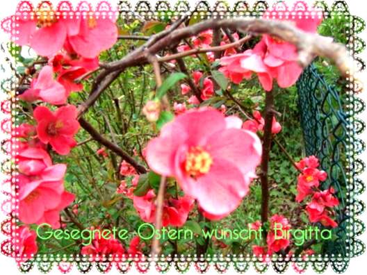 Gesegnete Ostern Blumengruß