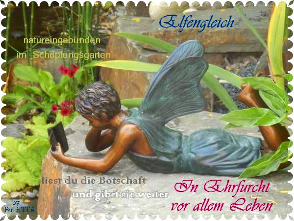 Birgitta und Angys Elfe - In Ehrfurcht  vor dem Leben