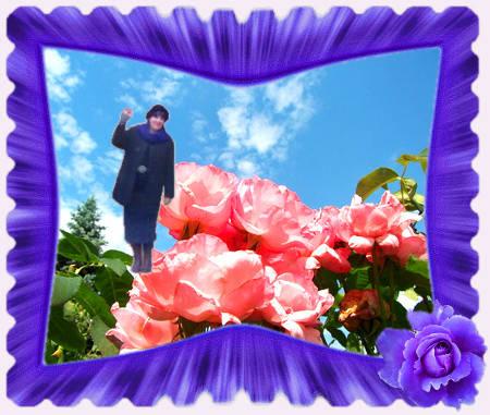 Birgittas poetische Rosengärten