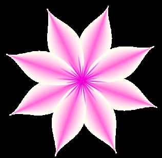 Blüte-Pink