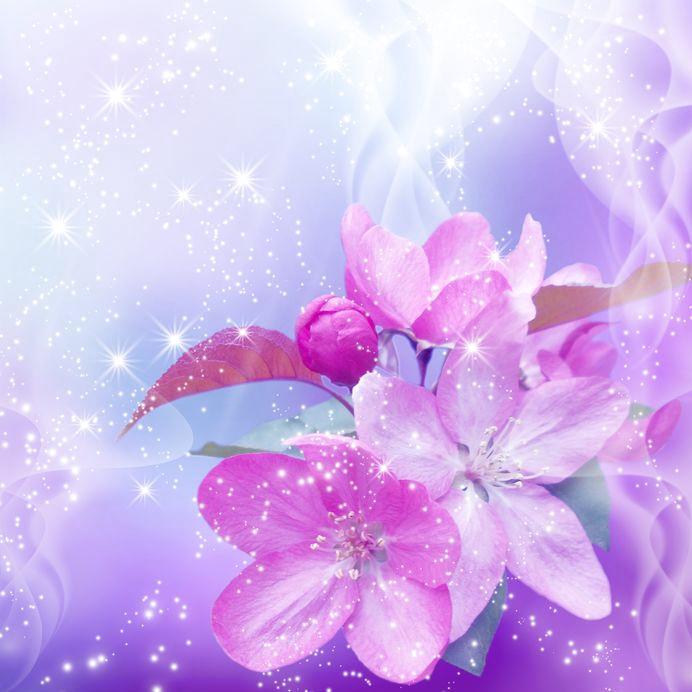 Blütenglanz und Sterne - Pink-Weiß-Lila