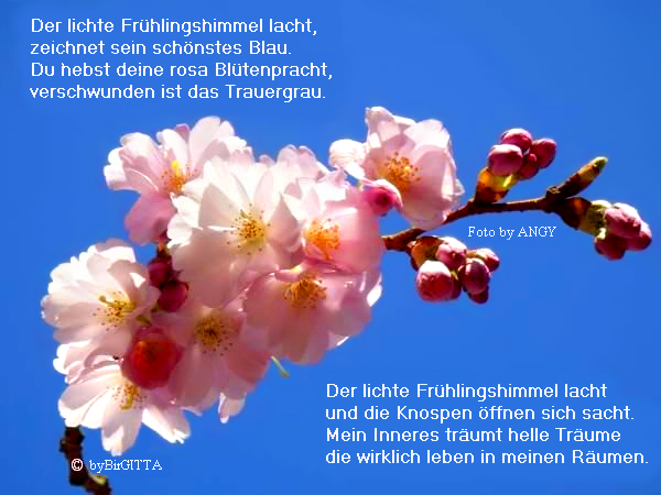Frühlingshimmel mit Gedicht