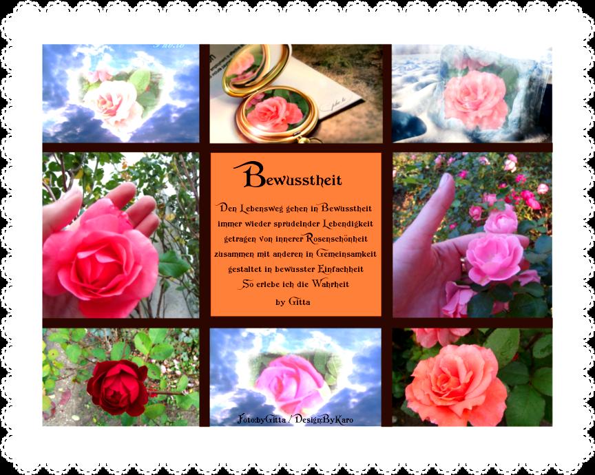 Innere Rosenschönheit