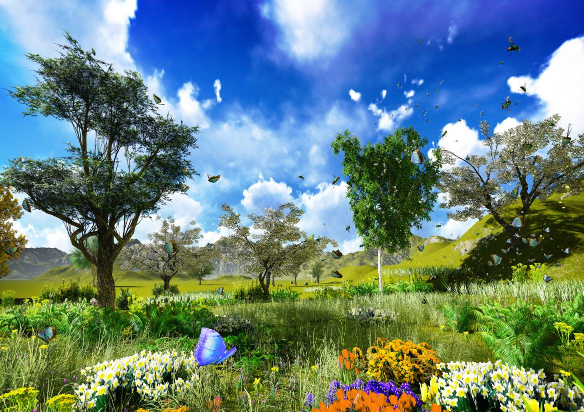 Märchen-Paradies-Schmetterlinge