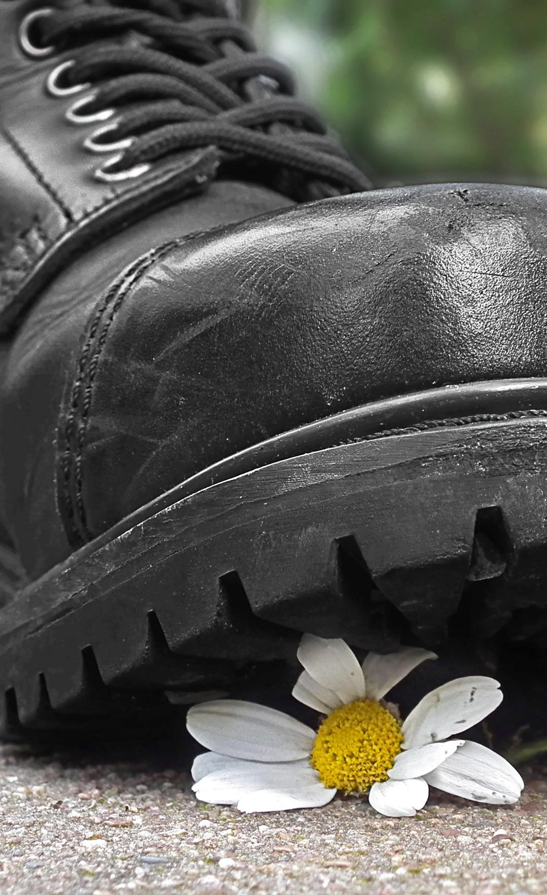 Springer-Stiefel zertritt Blume