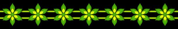 Trennlinie Blumen