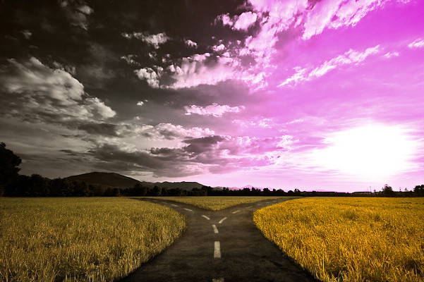 Weg der Entscheidung