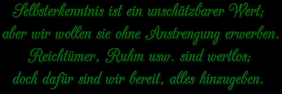 """Schriftzug: """"Wert der Selbsterkenntnis"""" - Grün"""
