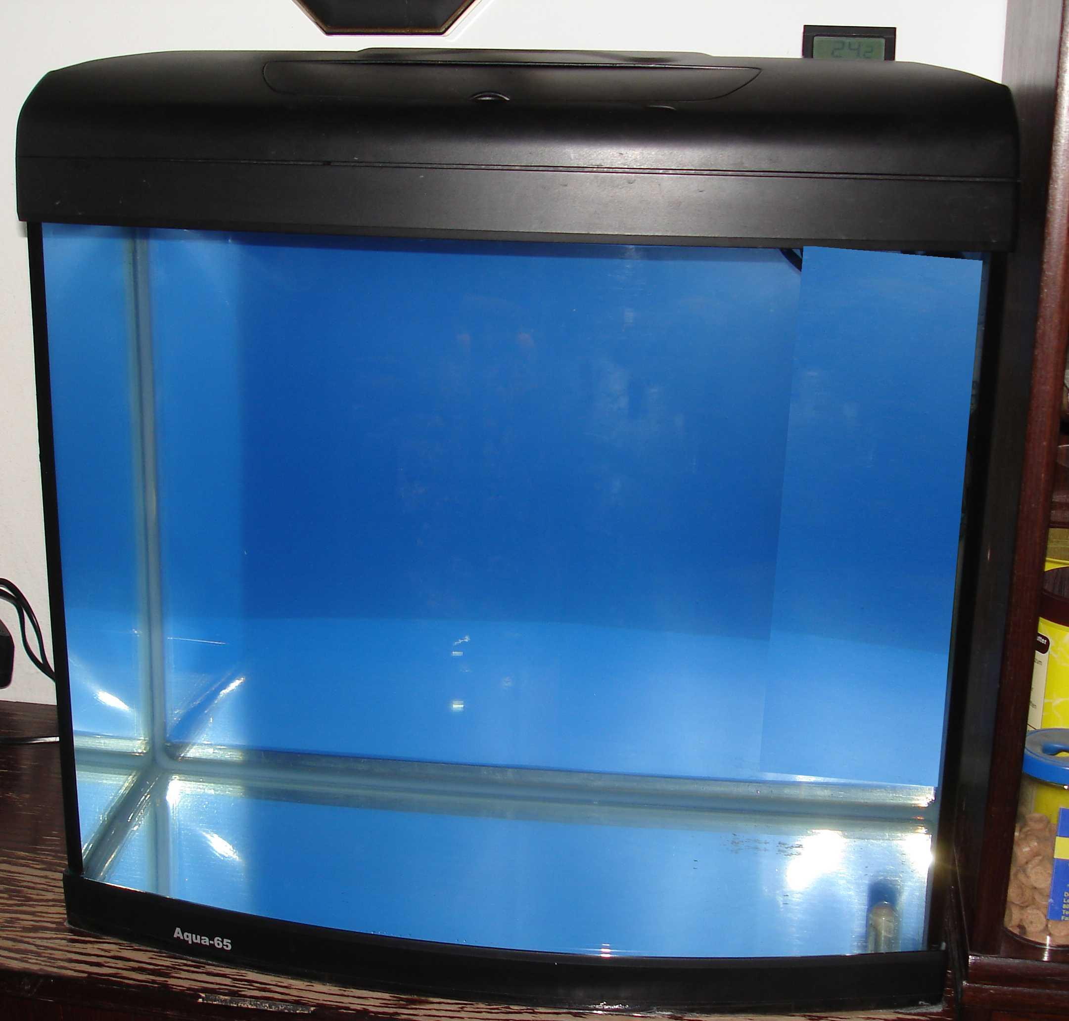 aquarium homepage. Black Bedroom Furniture Sets. Home Design Ideas