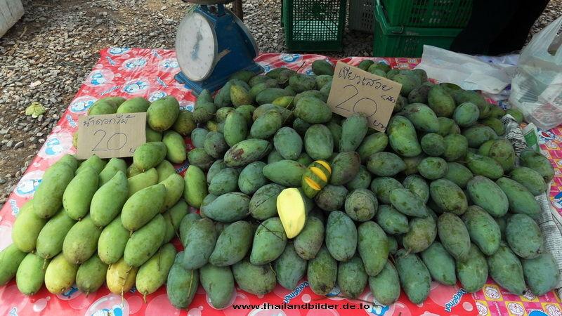 Früchte-bilder Mango grün