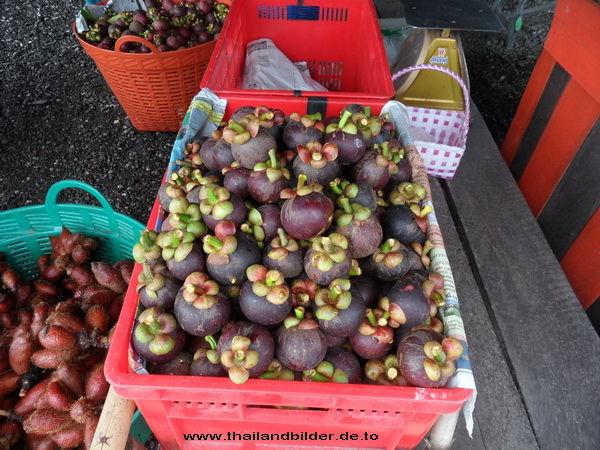 Fruchtbild Mangosteen Mangkut