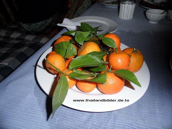 Früchte-bilder