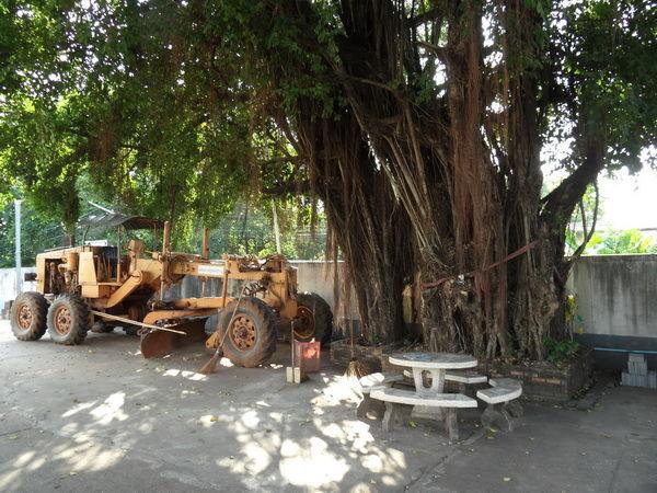 Bild Bagger gegen Baum