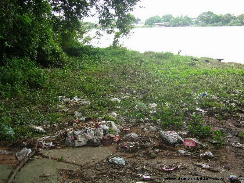 Umwelt-Bilder