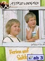 Ferien auf Saltkrokan (Schweden 1964)
