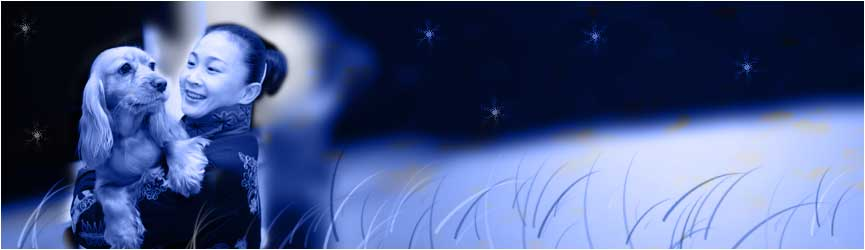 Slideshow Image 10