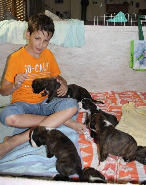 Keanu und Babys