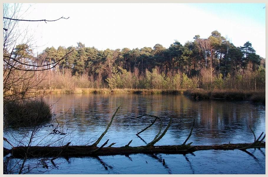 Moorsee (Grasmoor - Bramsche/Achmer)