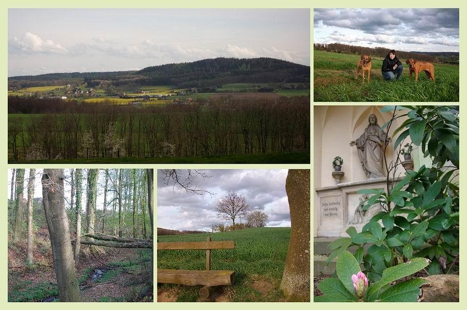 Georgsmarienhütte - Wandertour über den Kapellenweg zum Haus Brinke