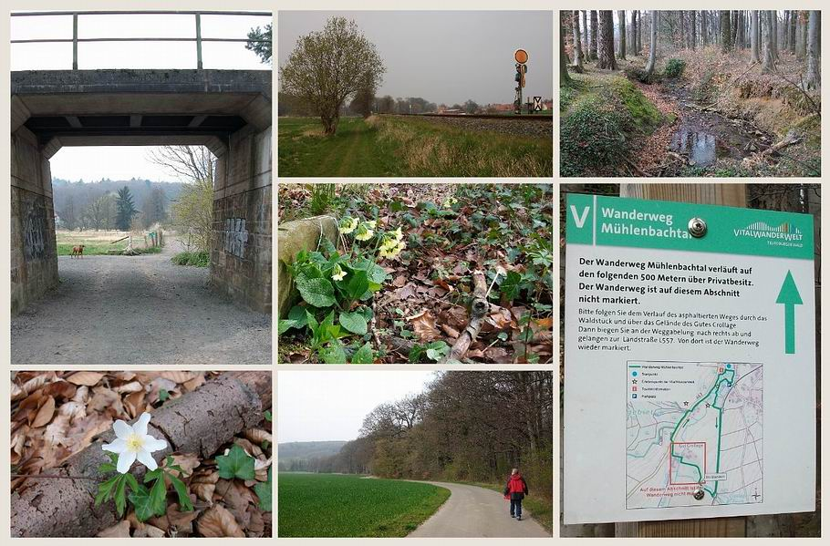 Bad Holzhausen - Wanderweg Mühlenbachtal