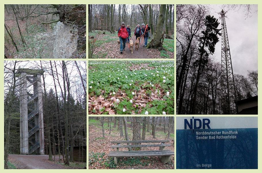 Bad Laer - Blomberg - Aussichtsturm - Fernsehsender NDR