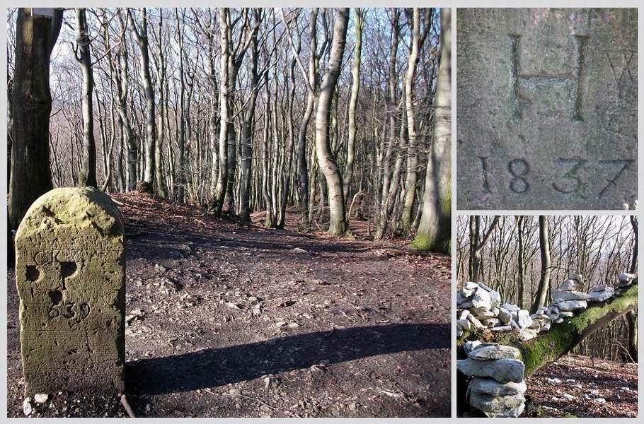 Dissen - alte Grenzsteine auf dem Hankenüll