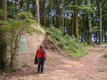 rundwanderweg wandern osnabrück hund bissendorfer burgenweg holter burg