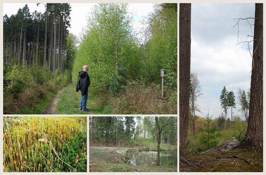 Melle - Rundwanderweg 1 zur Huntequelle