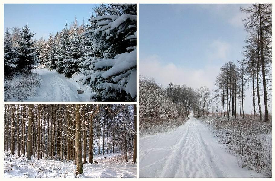 Winterlandschaft Meller Berge