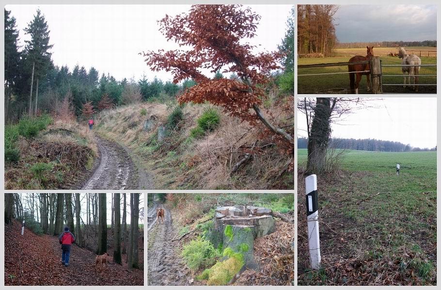 Ostercappeln/Venne - Wanderweg 11
