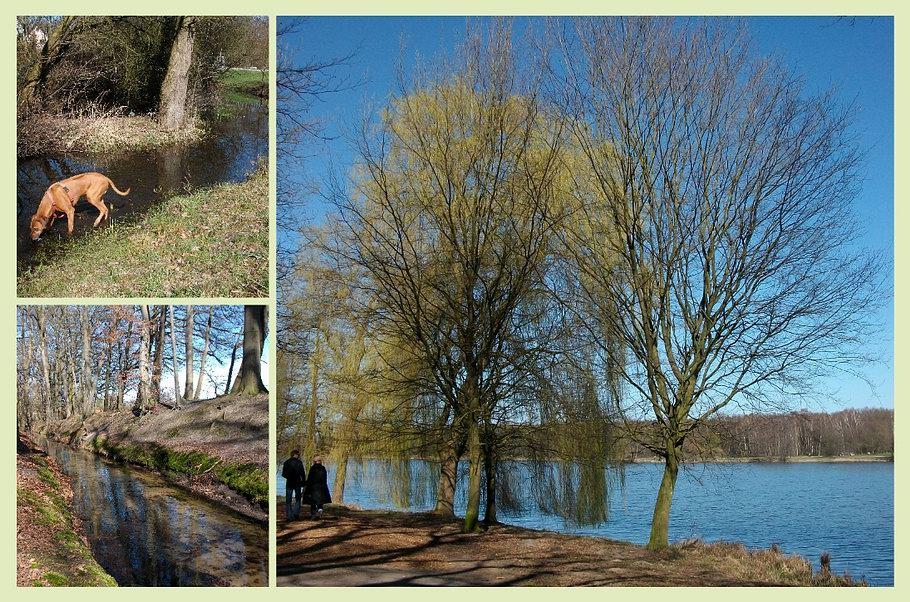 Historische Eversburger Landwehr - Rubbenbruchsee