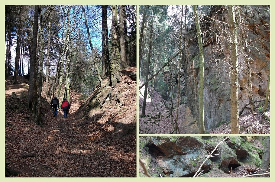 Hilter - Sandsteinbruch im Hohnsberg