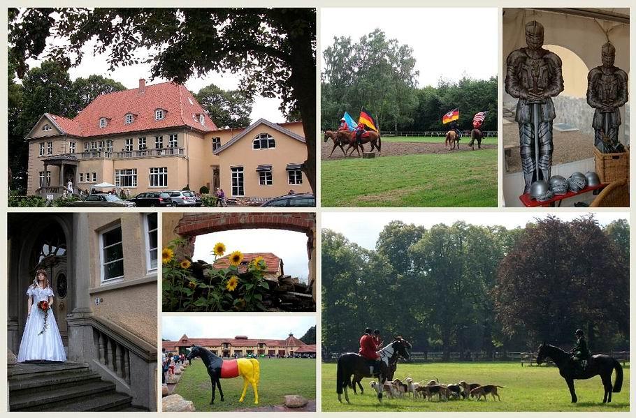 Gut Osthoff - Tag der offenen Tür - August 2013