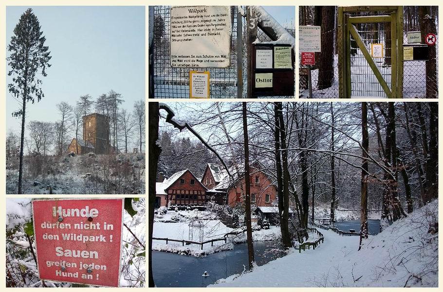 Wildpark Melle - Dietrichsburg - Weberhaus